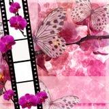 Las mariposas y las flores de las orquídeas pican el fondo con el fram de la película ilustración del vector