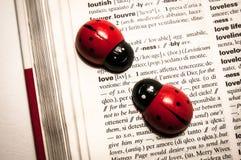 Las mariquitas en un diccionario que traducen la palabra aman de inglés al italiano Fotografía de archivo