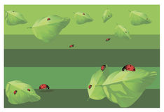 Mariquitas en las hojas stock de ilustración