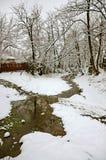 las marznąca wiosna zima Zdjęcia Stock