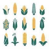 Las mazorcas de maíz vector los iconos para el cereal o el grano stock de ilustración