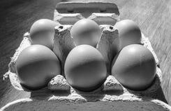 Las medias docenas liberan los huevos del pollo de la gama considerados en un cartón de huevos abierto foto de archivo libre de regalías