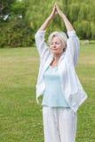 Las mejores mujeres del ager que practican ji del tai de la hormiga de la yoga fotos de archivo libres de regalías