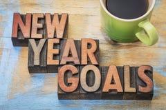 Las metas del Año Nuevo redactan el extracto en el tipo de madera Imagen de archivo