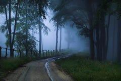 las mistyczne Zdjęcie Royalty Free