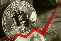 Las monedas de oro de bitcoins, la flecha roja del gráfico se dirigen hacia arriba Fotografía de archivo libre de regalías