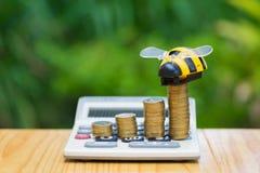 Las monedas y la calculadora crecientes en la tabla de madera con la abeja juegan en verde Fotos de archivo