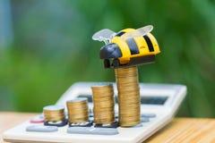 Las monedas y la calculadora crecientes en la tabla de madera con la abeja juegan en verde Fotografía de archivo
