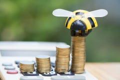 Las monedas y la calculadora crecientes en la tabla de madera con la abeja juegan en verde Imagen de archivo libre de regalías