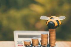 Las monedas y la calculadora crecientes en la tabla de madera con la abeja juegan en verde Foto de archivo