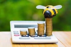 Las monedas y la calculadora crecientes en la tabla de madera con la abeja juegan en verde Imagen de archivo
