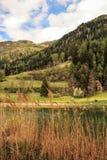 Las montañas ajardinan con el lago y las cañas en el primero plano Foto de archivo libre de regalías