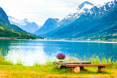 Las montañas ajardinan, fiordo y lugar del resto, Noruega Fotografía de archivo
