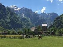¡Las montañas albanesas son apenas impresionantes! foto de archivo libre de regalías