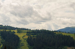 Las montañas cárpatas 37 Imagenes de archivo
