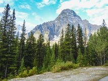 Las montañas canadienses de las montañas rocosas en banff Alberta fotos de archivo libres de regalías