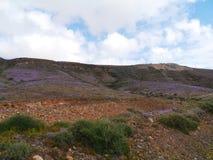 Las montañas coloridas en la isla Fuerteventura Fotos de archivo libres de regalías