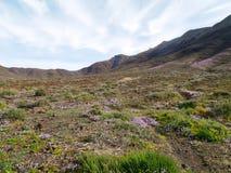 Las montañas coloridas en la isla Fuerteventura Imagen de archivo libre de regalías