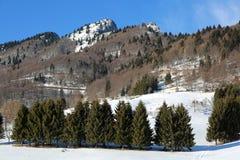 las montañas con la nieve blanca en invierno y el pico llamaron a SPITZ adentro foto de archivo libre de regalías