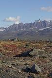 Las montañas de Alaska acercan a Valdez Imagenes de archivo