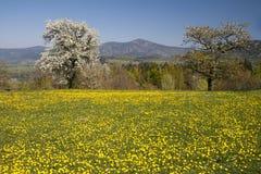 Las montañas de Beskydy Fotos de archivo