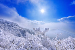 Las montañas de Deogyusan son cubiertas por la nieve y la niebla de la mañana en invierno imágenes de archivo libres de regalías