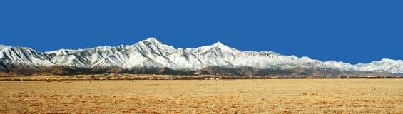 Las montañas de Huachuca en invierno en Arizona foto de archivo libre de regalías