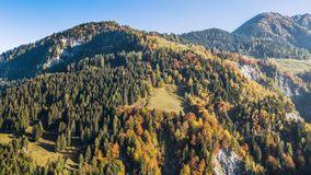 Las montañas de los colores del otoño caen las montañas Suiza 4k aéreo metrajes