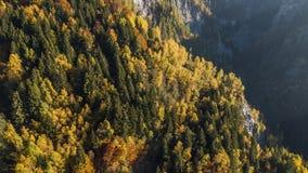 Las montañas de los colores del otoño caen las montañas Suiza 4k aéreo almacen de video
