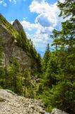 Las montañas de Rarau Foto de archivo libre de regalías