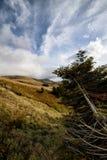 Las montañas de Toscana, paraíso son siguientes Imágenes de archivo libres de regalías