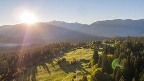 Las montañas del árbol de la salida del sol colocan Suiza 4k aéreo almacen de metraje de vídeo