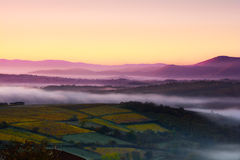 Las montañas del Beaujolais con la primera mañana se encienden, Francia Fotografía de archivo libre de regalías