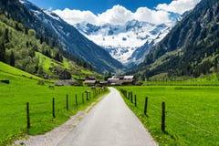 Las montañas del verano de la primavera ajardinan con el pueblo alpino y los picos nevosos en el fondo Stillup, Austria, el Tirol foto de archivo libre de regalías