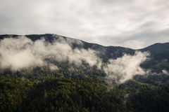Las montañas en la niebla Imágenes de archivo libres de regalías