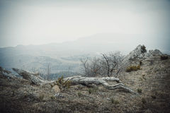 Las montañas en la niebla Imagen de archivo libre de regalías