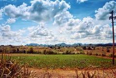 Las montañas pintorescas de Pinar del Rio Cuba Latin America del pueblo de Vinales del valle del paisaje colocan la nube Imágenes de archivo libres de regalías
