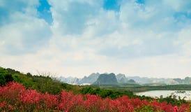 Las montañas y el bosque del flor del melocotón Fotos de archivo libres de regalías