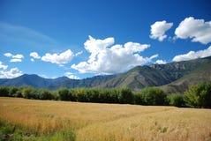 Las montañas y los campos Imagen de archivo