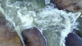Las morsas pinniped mamíferos en agua de la aero- opinión el Océano ártico sobre la nueva tierra metrajes