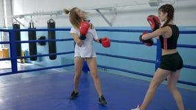 Las muchachas atléticas entrenan en los pantalones cortos cortos en gimnasio, soplos de las tomas de la muchacha en las patas del metrajes