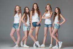 Las muchachas de la moda que se unen y que miran la cámara sobre fondo gris del estudio Foto de archivo libre de regalías