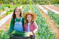 Las muchachas del granjero del niño de Litte en la cebolla cosechan la huerta Fotos de archivo libres de regalías