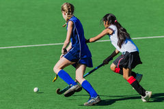 Las muchachas del hockey enfocan la bola Imagenes de archivo