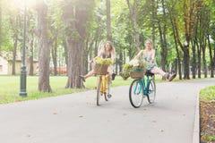 Las muchachas elegantes del boho feliz montan juntas en las bicicletas en parque Imagen de archivo