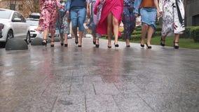 Las muchachas encantadoras en vestidos hermosos profanan en la calle Semana de la moda del tamaño extra grande Cámara lenta almacen de metraje de vídeo