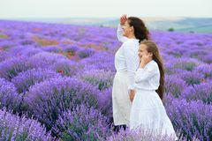 Las muchachas est?n en el campo de flor de la lavanda, paisaje hermoso del verano imagen de archivo libre de regalías