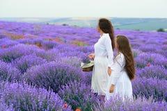 Las muchachas est?n en el campo de flor de la lavanda, paisaje hermoso del verano fotos de archivo libres de regalías
