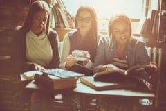 Las muchachas estudian juntas en café foto de archivo libre de regalías