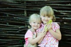Las muchachas juegan con el pato Foto de archivo